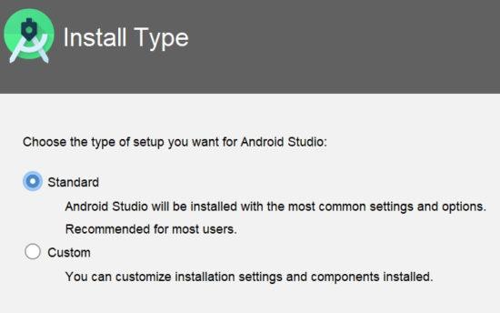 install type選択画面